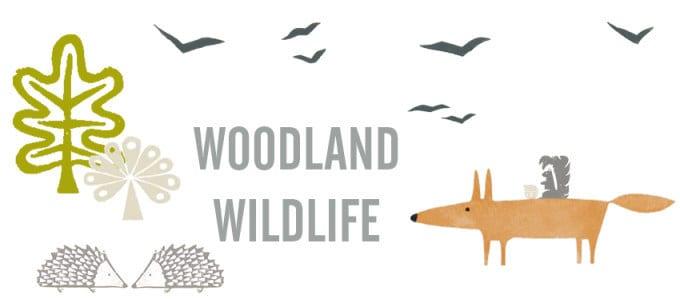 Scion-Woodland-Wildlife-Redone-Blog-01 Tony Baert