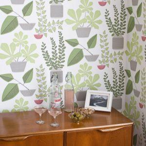 tony-baert-house-plants-sfeer